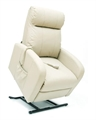 Euro Leather Liftchair-furniture-Access Mobility